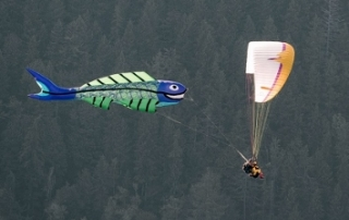 50' fish kite flown by Marc Chirico Seattle Paragliding